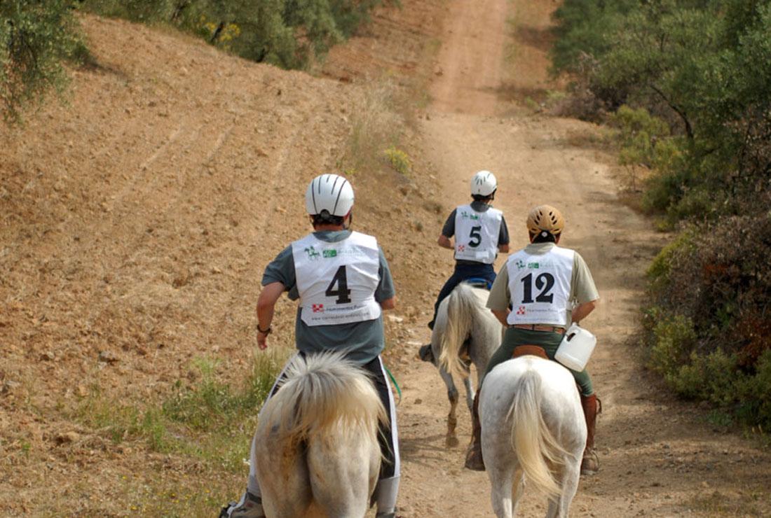 03Tusitala_Endurance_Team-(14)